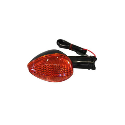 Picture of DOT Turn Signal